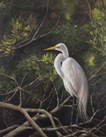 Shelter - Tricia George, Wildlife and Abstract artist