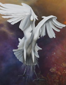 Transcendence by Tricia George